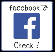 FBmini